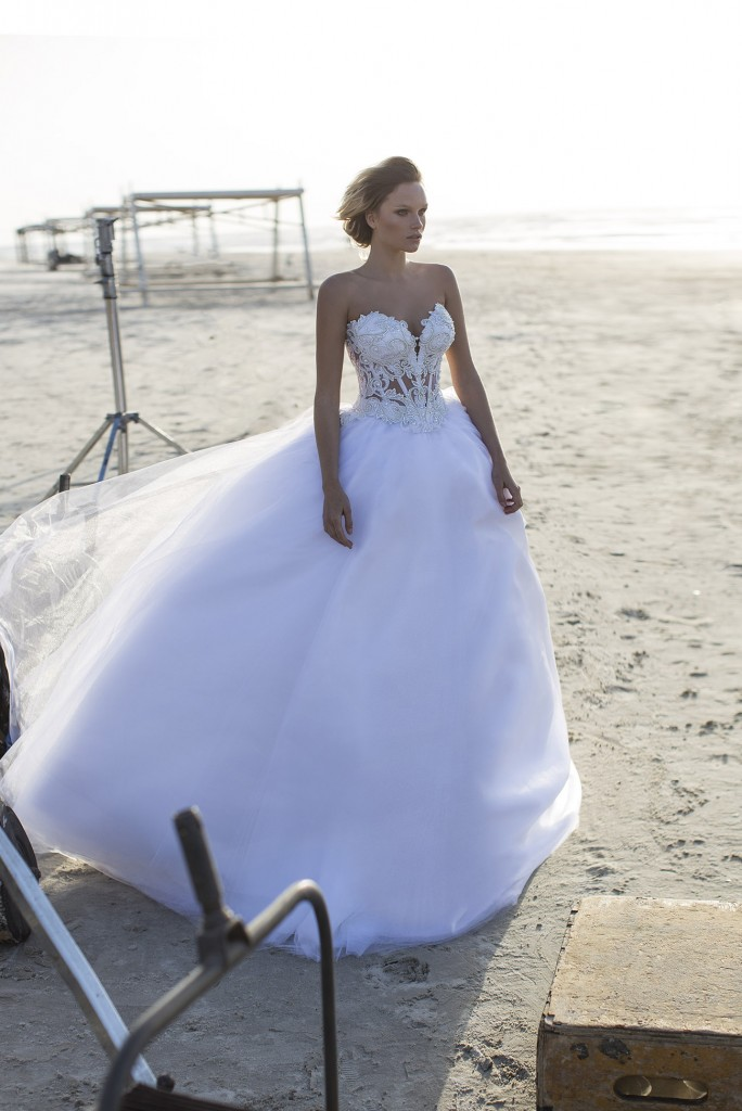 Gorgeous Dream Wedding Dress